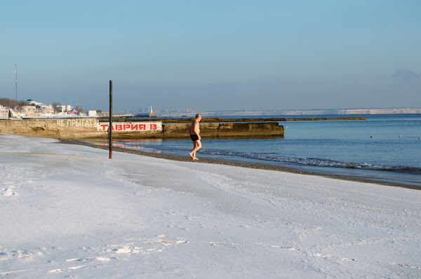 одесса зима пляж черное море морж