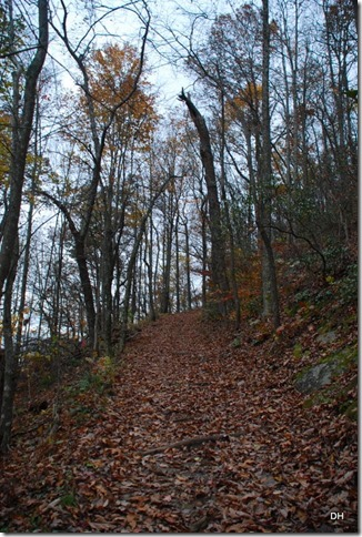 10-31-15 Cumberland Gap Saddle Hike (63)