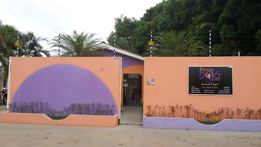 Pet Shop Podium Dog Center, R. João Magalhães, 1502 - Aeroporto, Boa Vista - RR, 69310-058, Brasil, Loja_de_animais, estado Roraima