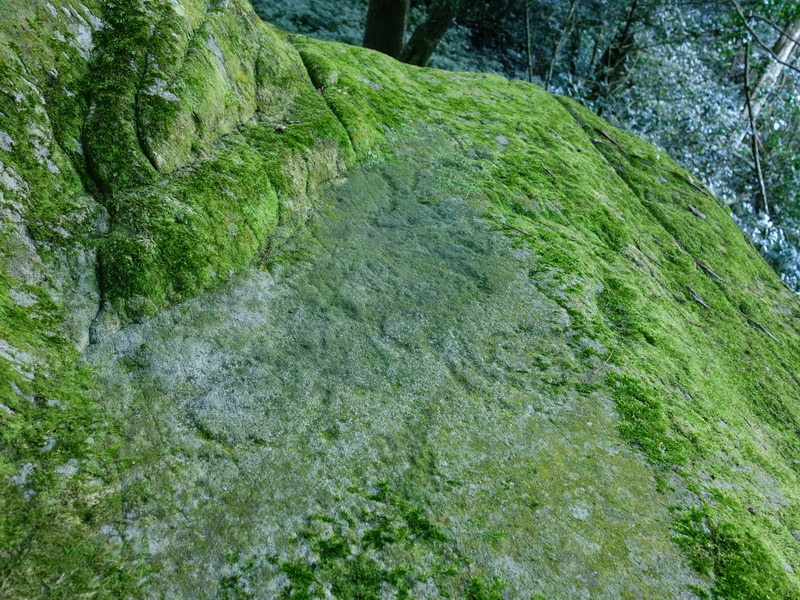 2014_0101-0105 萬山神石、萬山岩雕順訪萬頭蘭山_0551