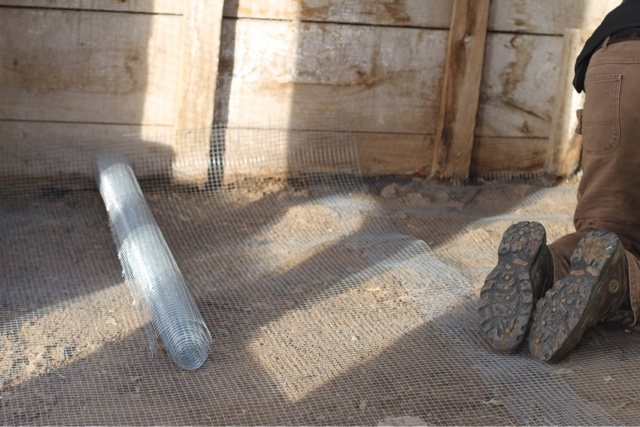 hardware cloth covers the dirt and rock floor to prevent rodents from digging into the pen
