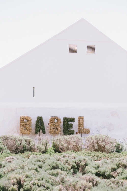 Paige and Ty wedding Babylonstoren South Africa shot by dna photographers 14.jpg