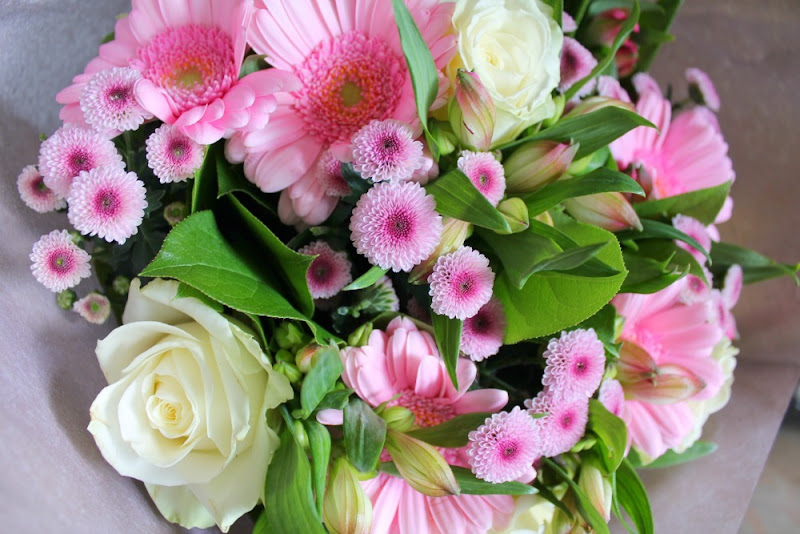 serenata online flowers review