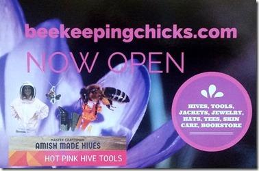Beekeepingchicks