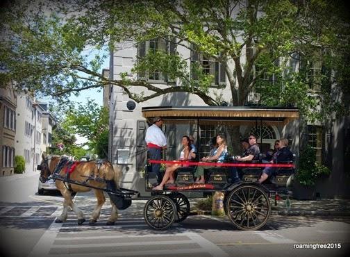 Horse-drawn Tour