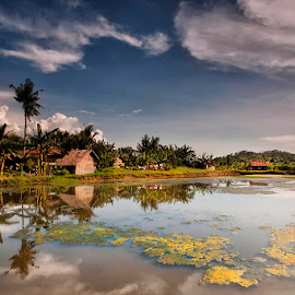 Tropical Lake  by Þorsteinn H. Ingibergsson - Landscapes Prairies, Meadows & Fields ( nature, meadow, structor, lake, landscape, philippines )