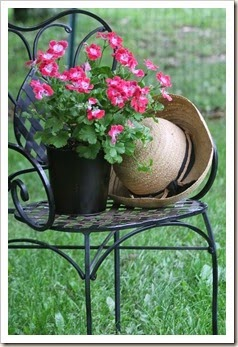 courtyard.chair and flowers 049