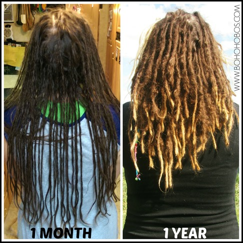 Dreads 1 Week 1 Year Comparison