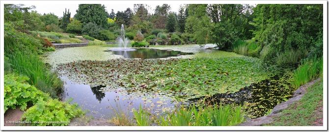 150628_Vancouver_VandusenBG_pond_pano