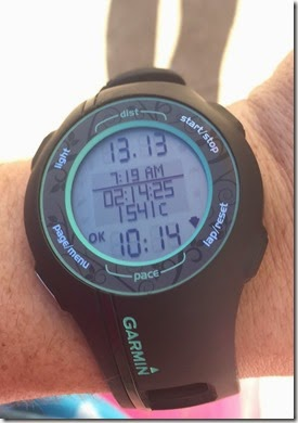 Diva's Half Marathon (23)