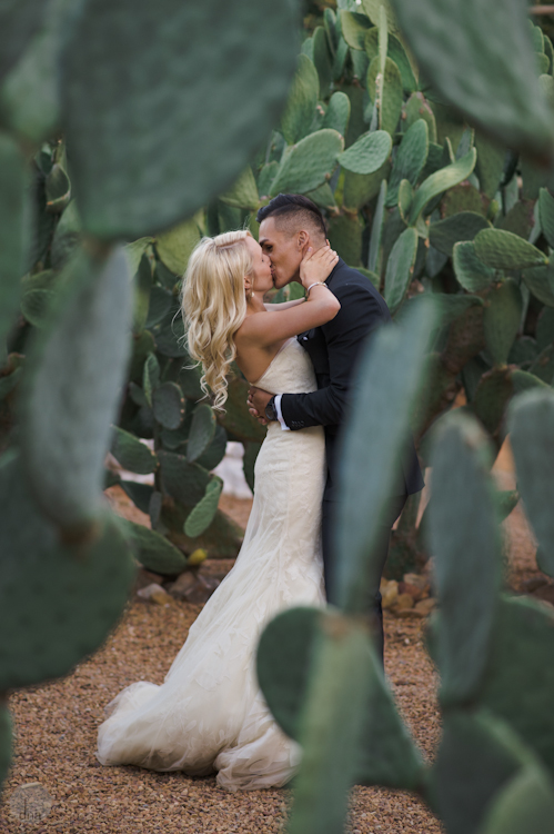 Paige and Ty wedding Babylonstoren South Africa shot by dna photographers 320.jpg