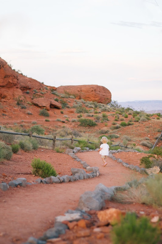 Red Hills Desert Garden (21)