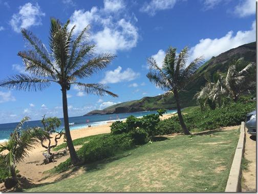 Hawaii 081