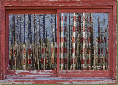 America Still Beautiful Red Picture Window Frame Photo Art View