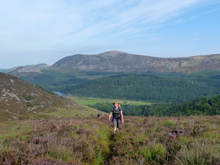 Jo paces through the heather