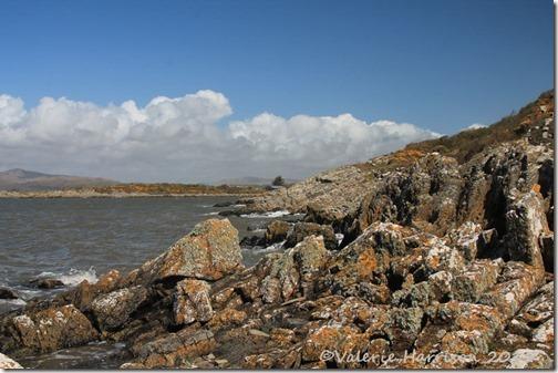 12-Carrick-shore