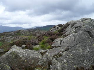 Brund Fell Summit (Grange Fell)