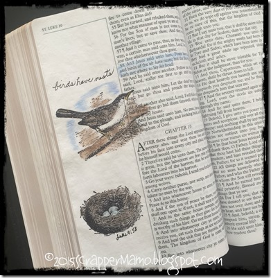 Bible Art Journaling Luke 9-58 Birds Have Nests