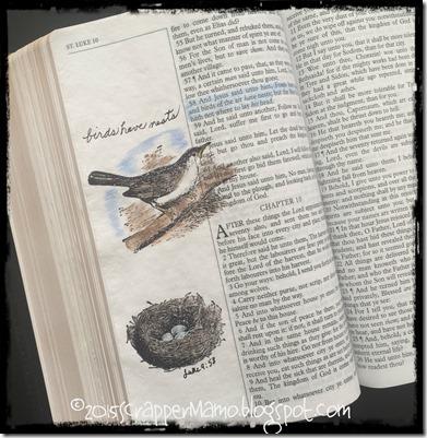 Bible Art Journaling Luke 9-58 Birds Have Nests