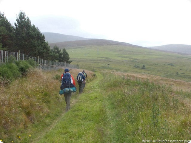 speyside way 015