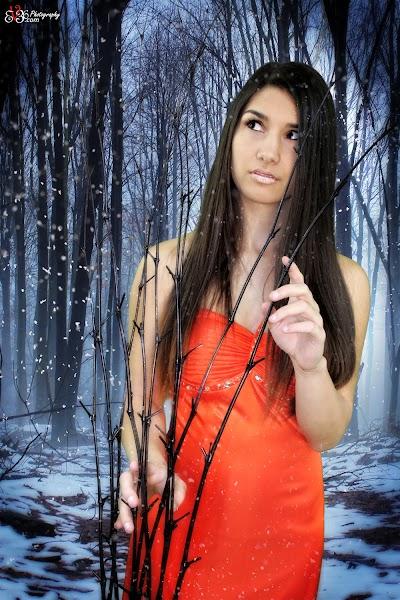 Forest-Snow-Princess.jpg