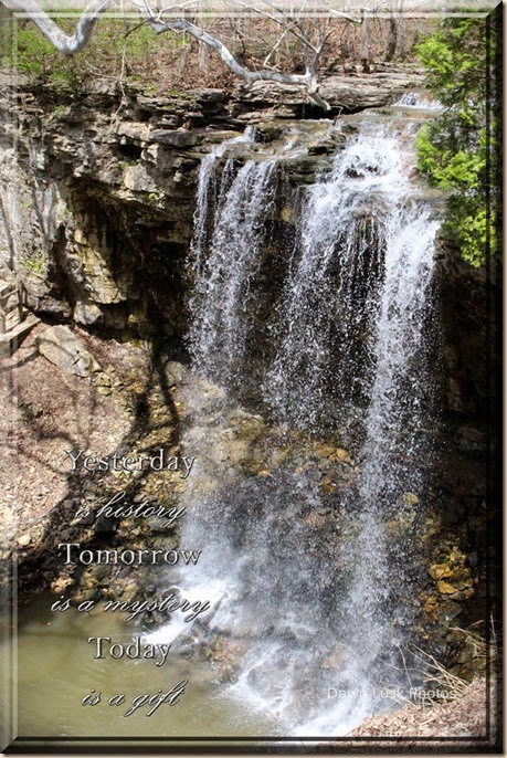 Charlestons Falls, Dawn Lusk