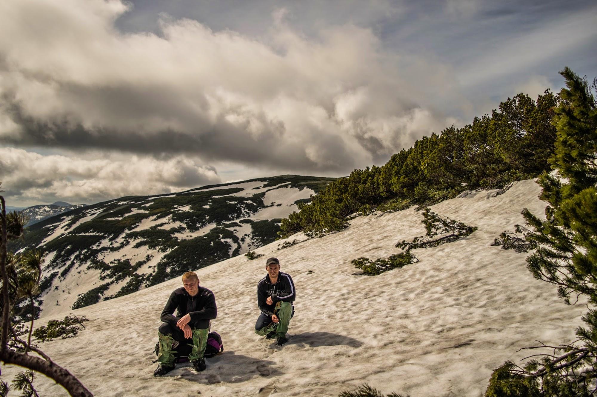 Паренки, травень, сніг, жереп, альпійка