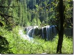 lewis river falls 10