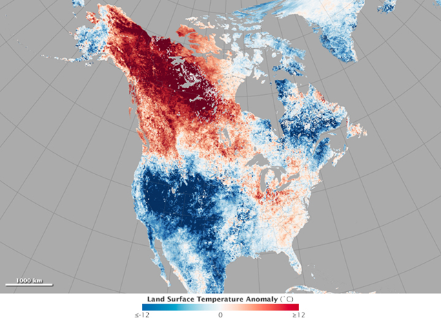 North American land surface temperatures from May 17–24, 2015, compared to the 2001–2010 average for the same eight-day period. In the third week of May, it was warmer in Fairbanks, Alaska, than in Washington, D.C. The small town of Eagle, Alaska, was hotter on May 23 than it has been on any day in Houston or Dallas to date in 2015. Graphic: Joshua Stevens / NASA Earth Observations Website