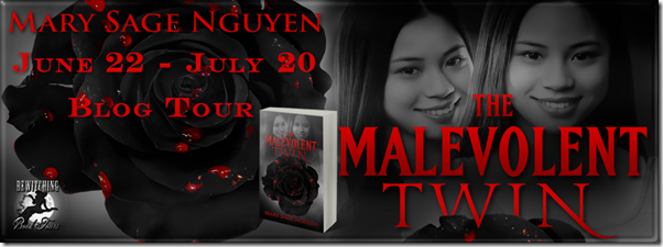 The Malevolent Twin Banner 851 x 315