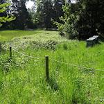Parc de la Maison de Chateaubriand : ruches