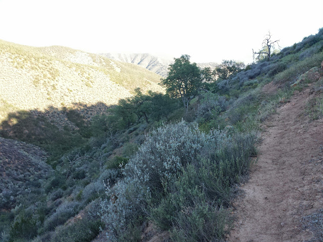 This section of trail followed a lot of cow paths and became a bit difficult to ride with a fully-loaded bike.