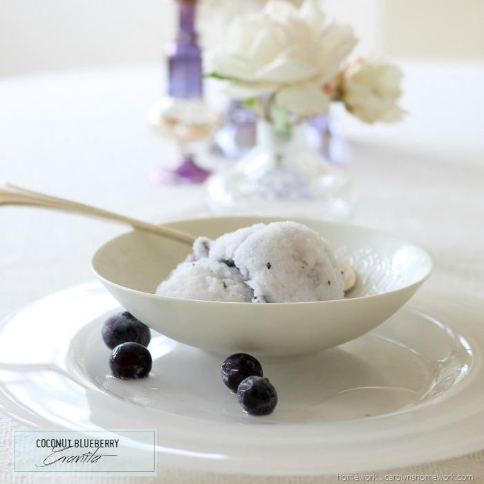 Coconut Blueberry Granita (homework - carolynshomework (9)