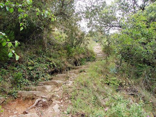Senderismo: Barranco de Aguas Negras