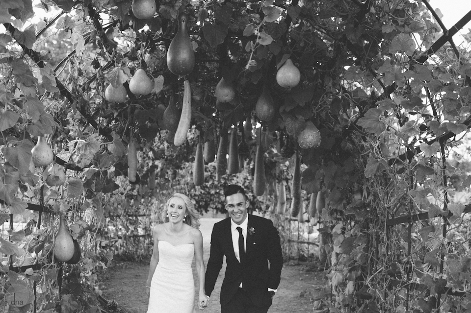 Paige and Ty wedding Babylonstoren South Africa shot by dna photographers 333.jpg