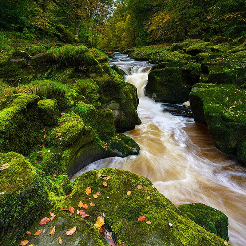 Bolton Strid: A Stream That Swallows People