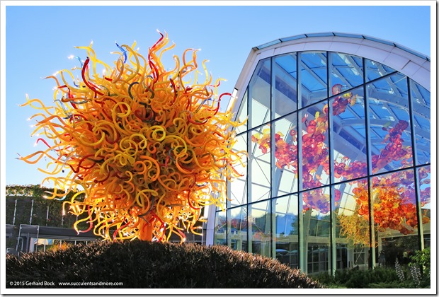 150626_Seattle_ChihulyGardenGlass_0110