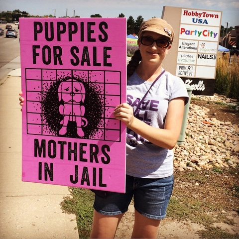 puppy mills animal welfare pet stores