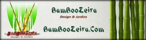 Tarja Bamboozeira 1200px -contorno