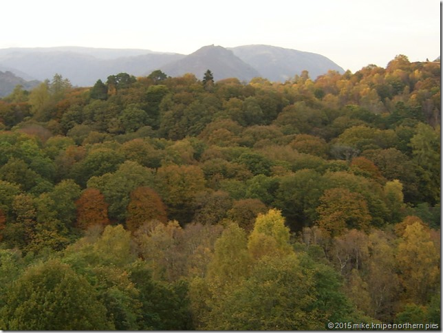 helm crag emerges from the trees