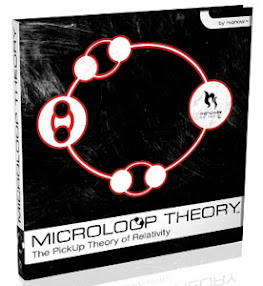 Cover of Mehow's Book Microloop Theory