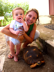 """There's a """"radiated tortoise"""" that lives in our area and Matimu and Lora got a picture with it."""