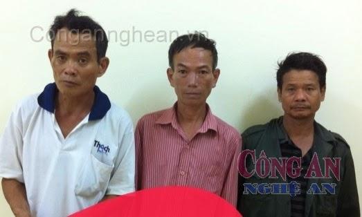 3 đối tượng chuyên trộm bò bị bắt giữ