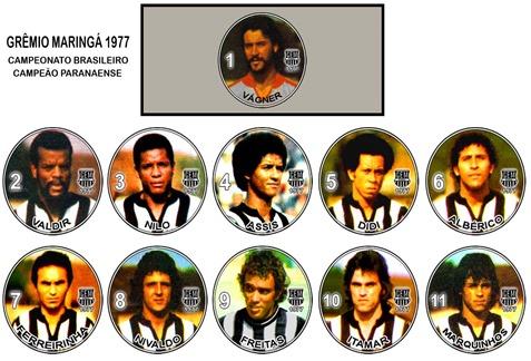 132 - Grêmio Maringá 1977 - Campeonato Brasileiro e Campeão Paranaense
