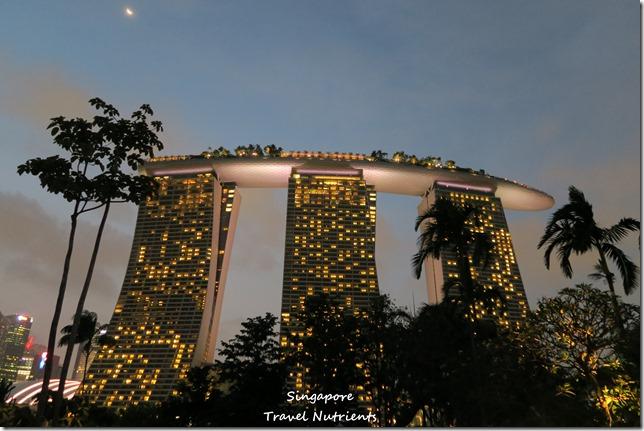 新加坡超級樹燈光秀 (16)