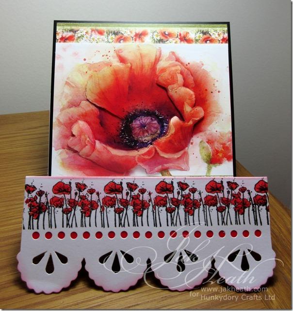 Poppy Garden4