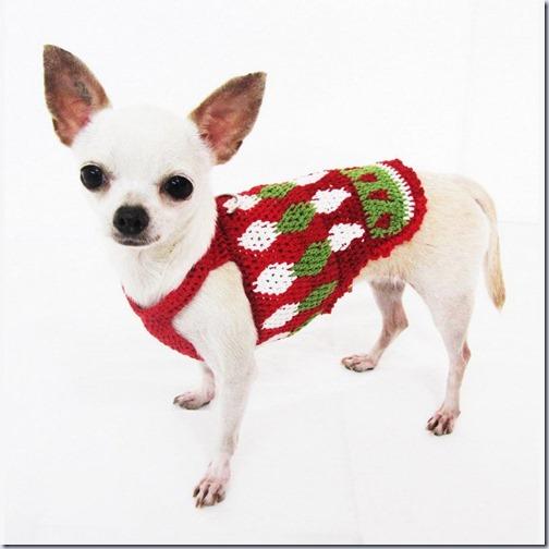 perro navidad (5)