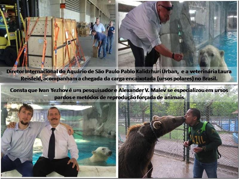 aquariosp_kazan