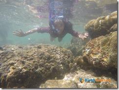 Snorkeling Pantai Nglambor Kisah Foto Blog04