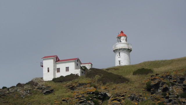 The Taiaroa Head Lighthouse, near the Otago Albatross Centre.